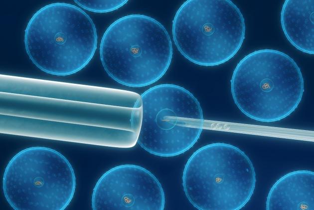 Стволовые клетки – будущее филлеров?